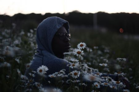 Free Young boy sitting in the field of flowers