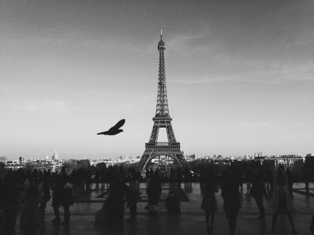 Free People at the Eiffel Tower