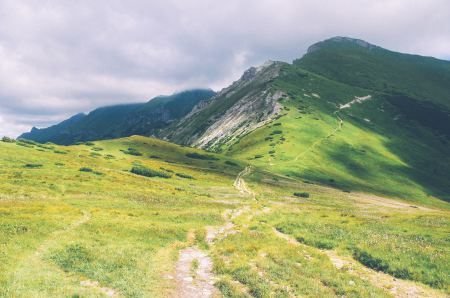 Free Verdant mountain landscape