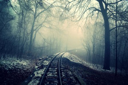 Free Railway in foggy forest