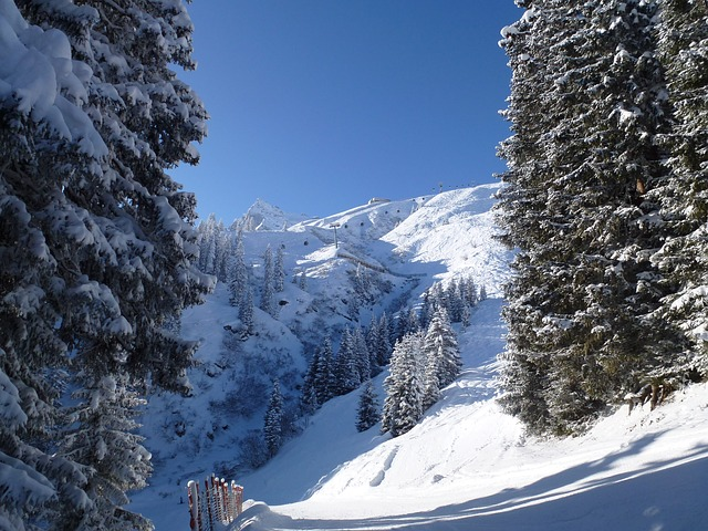 Free winter montafon austria