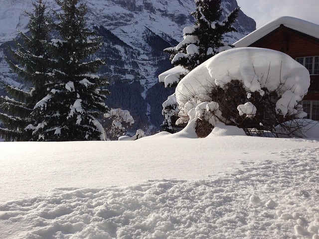 Free hut mountain hut snowy wintry mountains snow