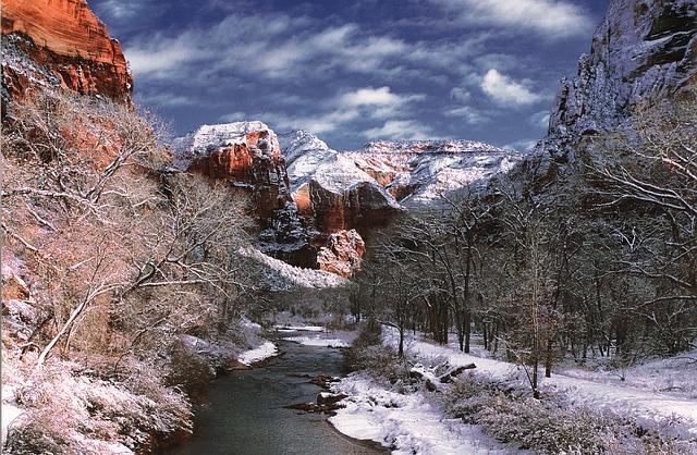 Free virgin river zion national park rock utah usa