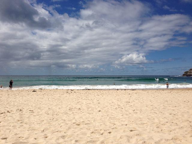 Free sydney sea beach