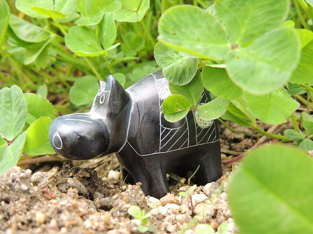 Free hippo talisman gray symbol of happiness