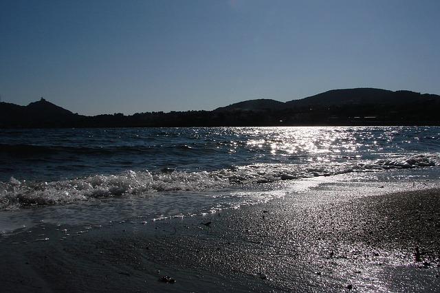 Free beach evening back light ocean twilight romantic
