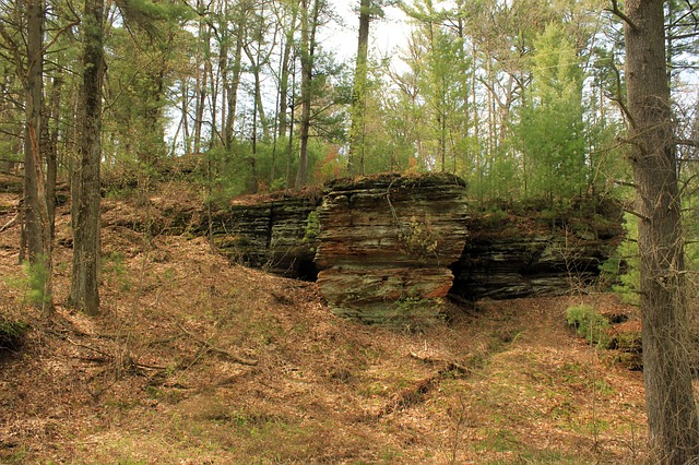 Free wisconsin rocky arbor state park rock outcropping