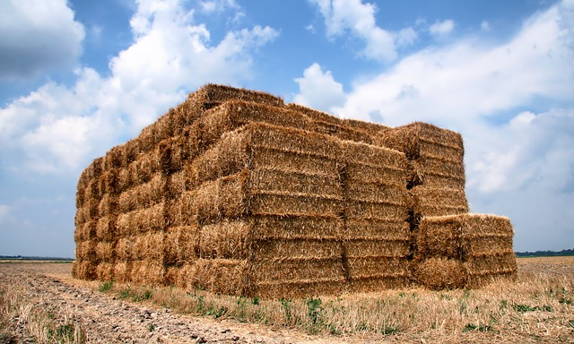 Free indiana straw bales farm field agriculture sky