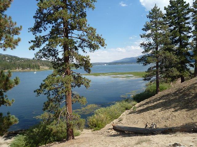 Free big bear lake forest rocks rock formation outdoors