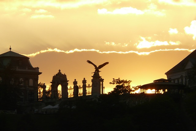 Free sunset back light silhouette mood