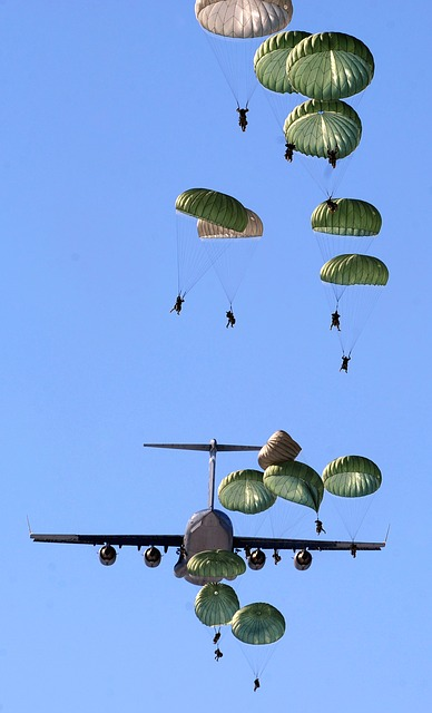 Free               parachutes parachutists plane jet military army