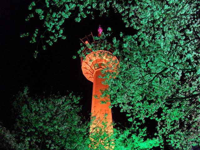 Free daegu in this world cherry blossom festival
