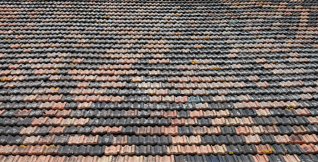 Free bricks roof barn building old craft background