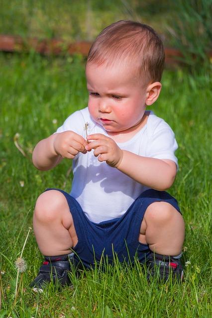 Free little boy kid boy child garden grass plays