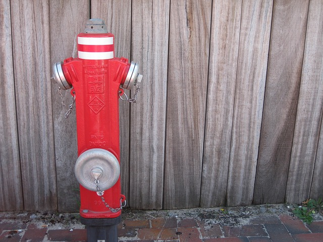 Free hydrant water fire metal red