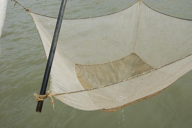 Free net fishing sea fisherman