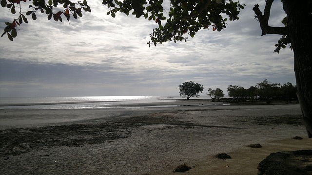 Free dusk beach gloomy