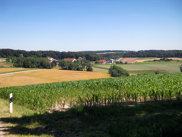Free bavaria germany farm rural corn field landscape