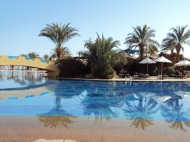 Free egypt taba desert swimming pool palm trees holiday