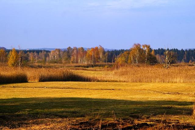 Free austria landscape scenic fields forest trees