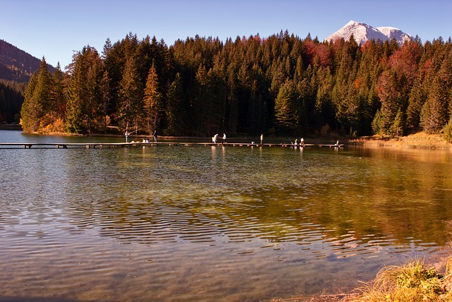 Free austria lake water reflections forest trees woods