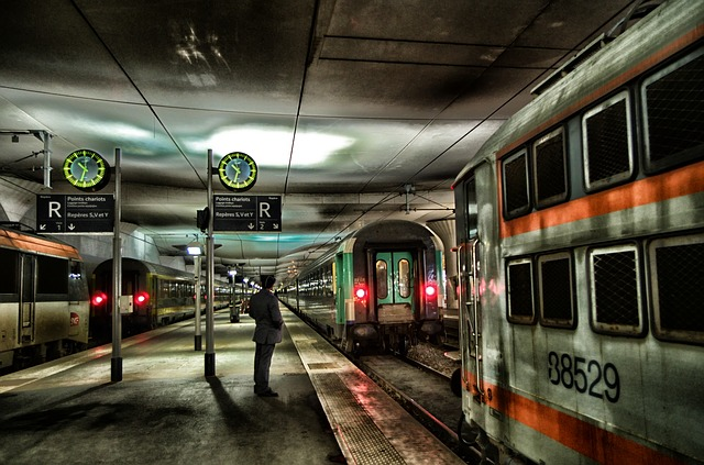 Free paris station depot man train trains platform