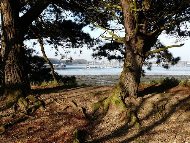 Free fareham creek portchester wicor harbour view