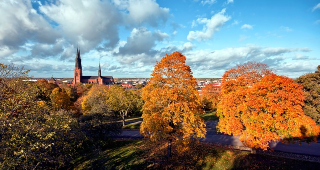 Free uppsala sweden scenic landscape buildings city