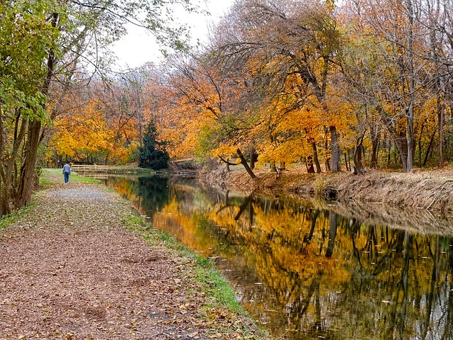 Free pennsylvania canal water forest trees woods fall