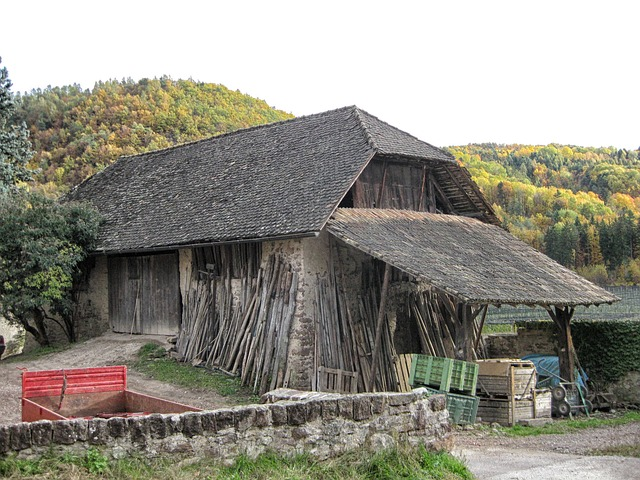 Free italy barn shed farm forest trees woods nature