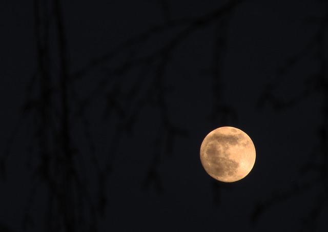 Free moon full moon night darkness dusk