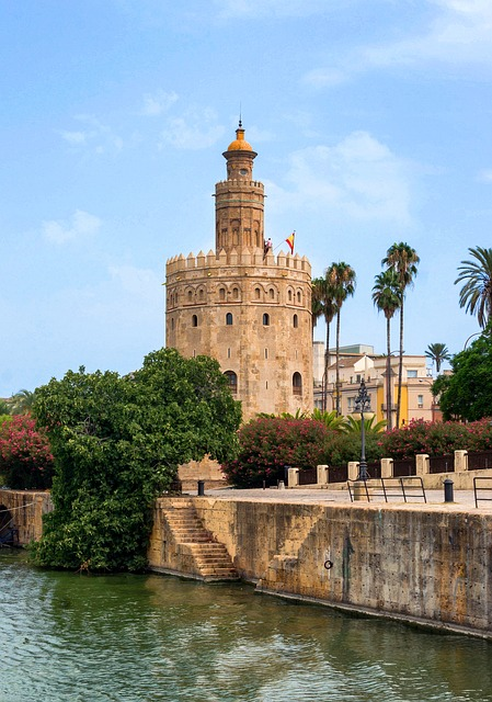 Free seville spain tower of gold flowers trees palms