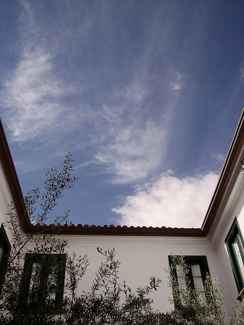 Free sky courtyard trees clouds