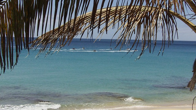 Free fuerteventura canary islands summer beach
