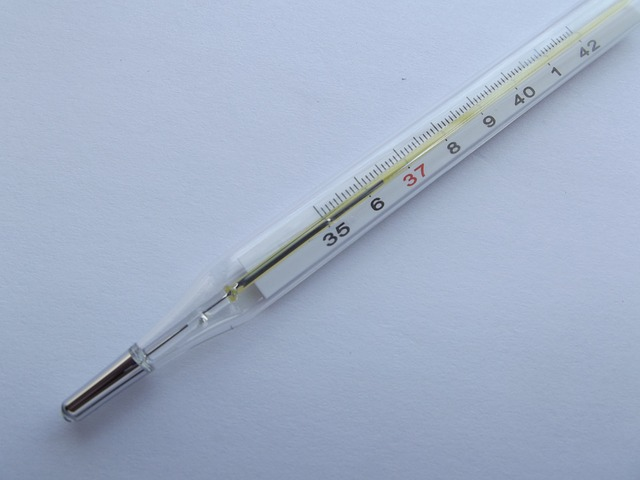 Free thermometer temperature instrument thermometers