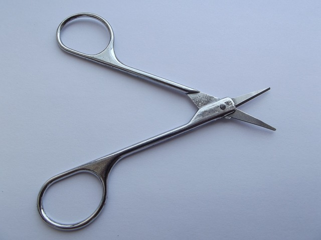 Free scissor scissors button court