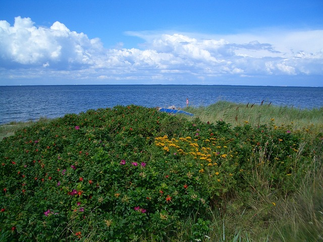 Free femo denmark landscape scenic island sky clouds