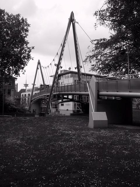 Free eat suspension bridge south district