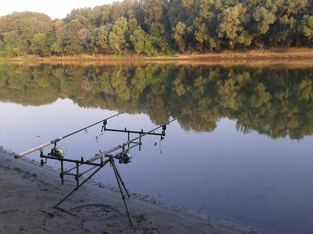 Free angler fishing rods water river summer part