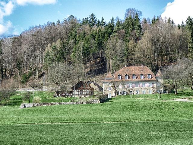 Free lagendorf switzerland forest trees woods landscape