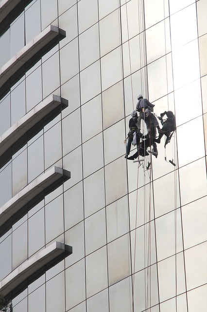 Free window cleaner window cleaning office tower