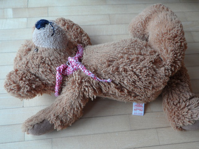 Free teddy careless thrown away leave lonely sad