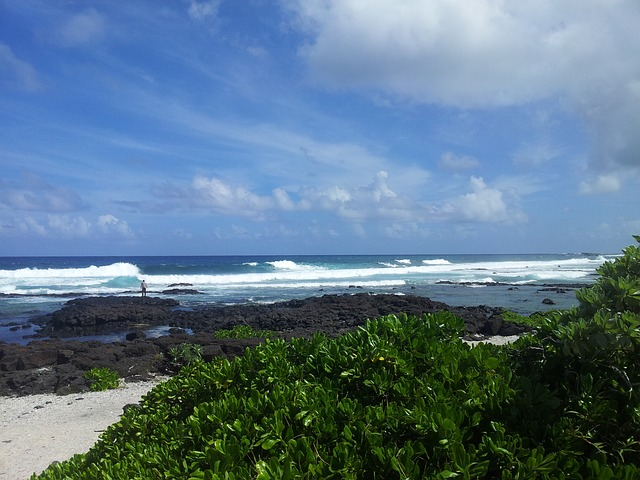 Free sea blue sky green mauritius