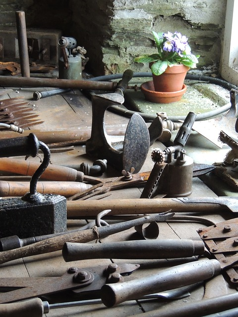 Free tools shed flower garden heligan cornwall england