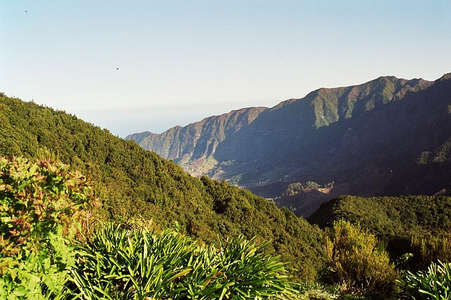 Free madeira highlands mountains summit levada hiking