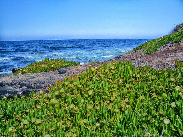 Free santorini greece sea ocean water horizon sky