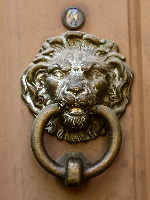 - Free Photos: Door Knocker Lion Head Vintage Bronze Antique Nightowl