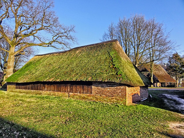 Free netherlands building shelter thatched roof