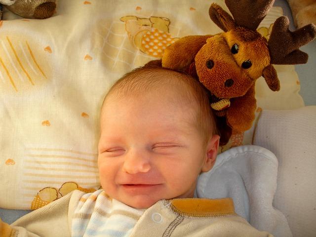 Free baby child infant boy newbie neonatal babies