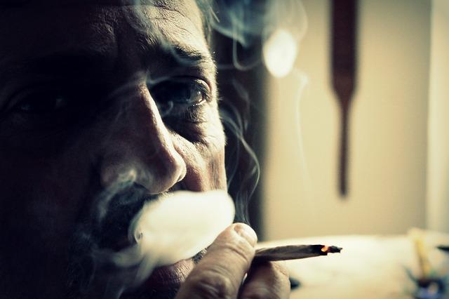Free smoke cigarette smoker cigarettes ash smoking
